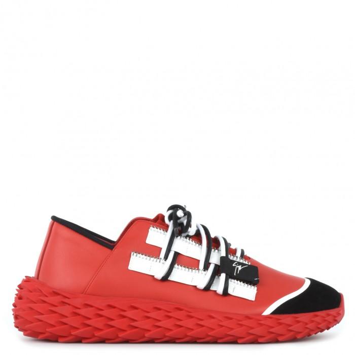 urchin-rocks-sneaker-basse-giuseppe-zanotti